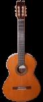 Flamenco-Guitar